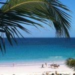 bahamasharborisle_mini