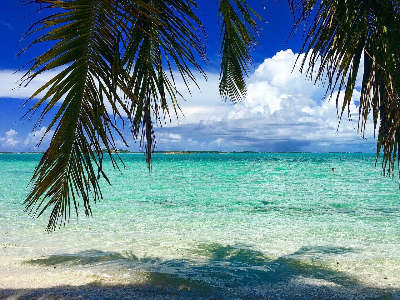 Bahamas Beach View